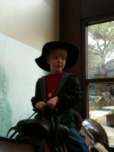 cowboywes